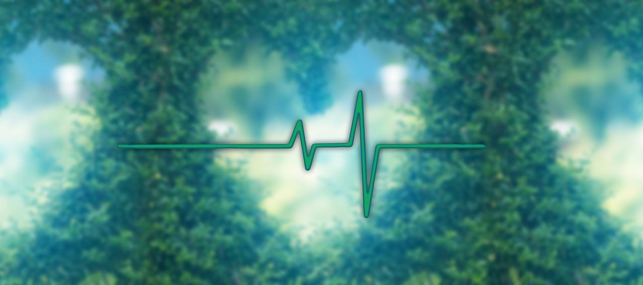 Ist es normal, dass der Blutdruck schwankt?