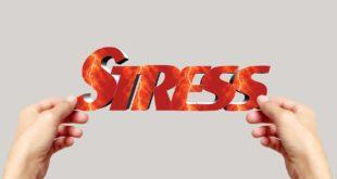 Bluthochdruck Symptom Stress