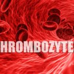 Thrombozyten