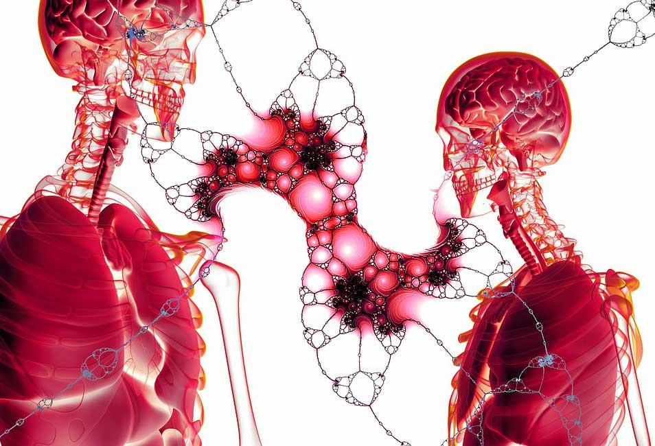 Blutarmut - Ursachen, Symptome und Behandlung der Anämie