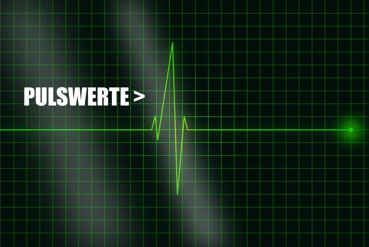 Pulswerte richtig bewerten - Indikator für Gesundheit des Blutkreislauf inkl. Blutdruck und Herz